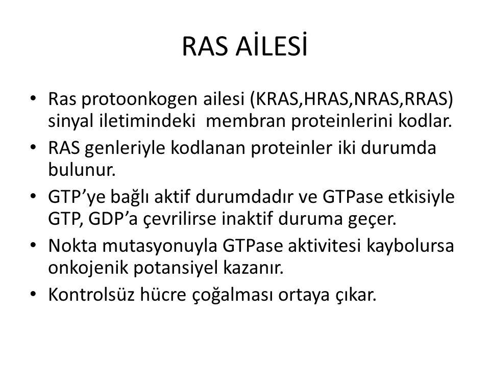 RAS AİLESİ Ras protoonkogen ailesi (KRAS,HRAS,NRAS,RRAS) sinyal iletimindeki membran proteinlerini kodlar.