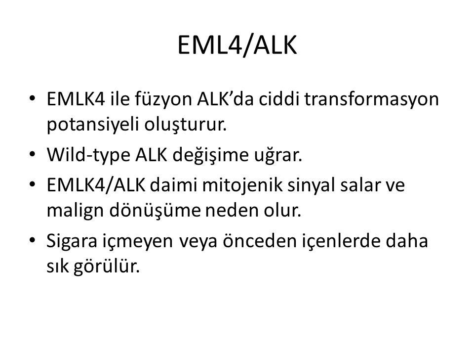 EML4/ALK EMLK4 ile füzyon ALK'da ciddi transformasyon potansiyeli oluşturur. Wild-type ALK değişime uğrar.