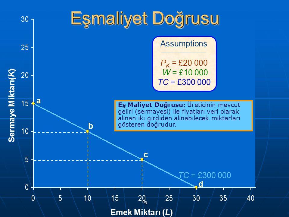 Eşmaliyet Doğrusu Assumptions PK = £20 000 W = £10 000 TC = £300 000