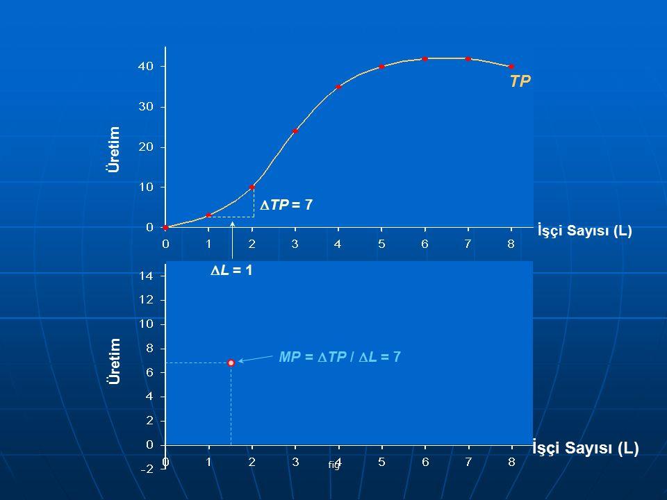 TP İşçi Sayısı (L) Üretim DTP = 7 İşçi Sayısı (L) DL = 1 Üretim