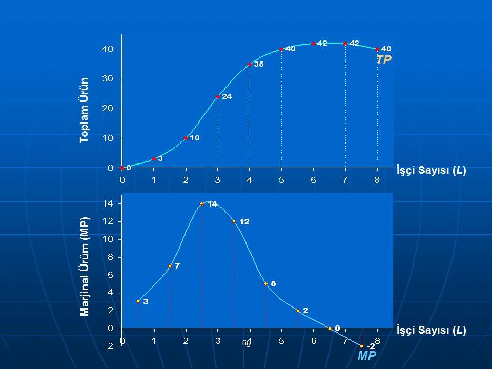 TP MP Toplam Ürün İşçi Sayısı (L) Marjinal Ürüm (MP) İşçi Sayısı (L)