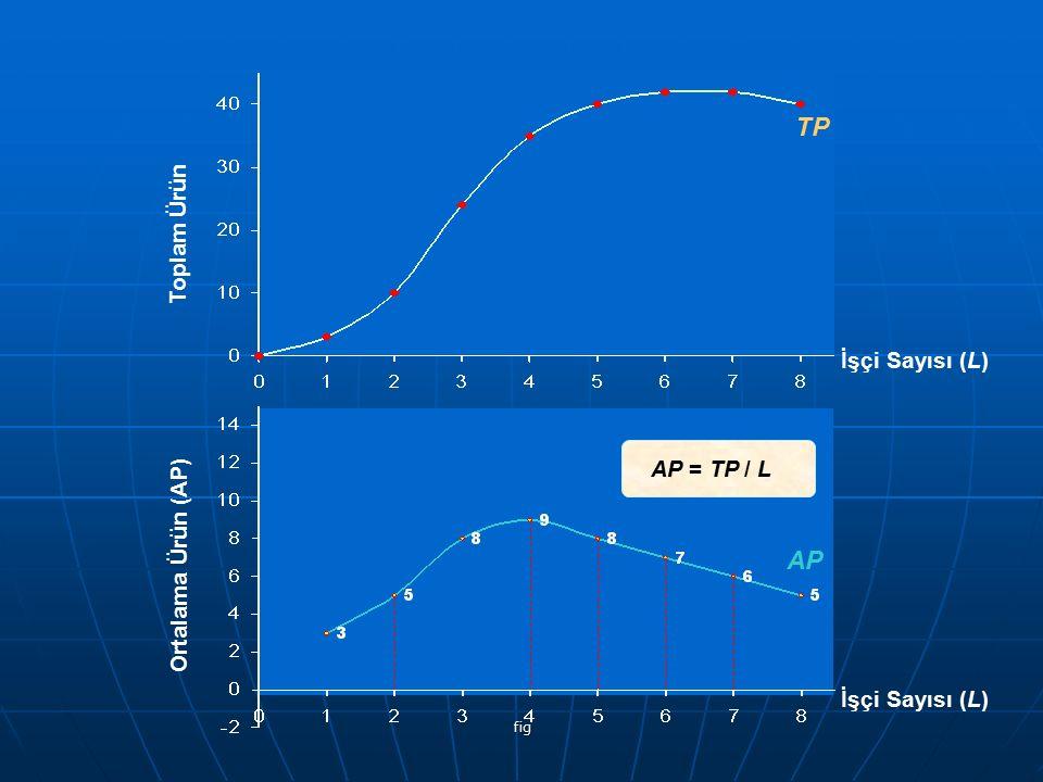 TP AP Toplam Ürün İşçi Sayısı (L) AP = TP / L Ortalama Ürün (AP)