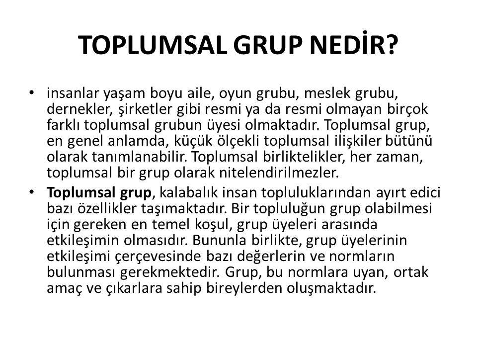 TOPLUMSAL GRUP NEDİR