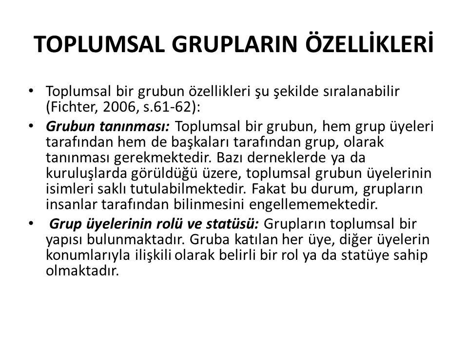 TOPLUMSAL GRUPLARIN ÖZELLİKLERİ