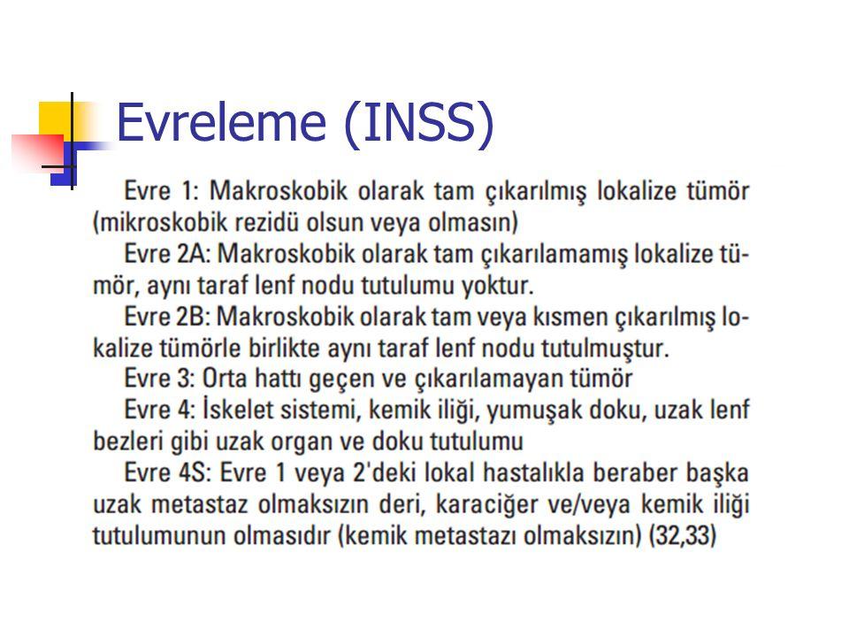 Evreleme (INSS)