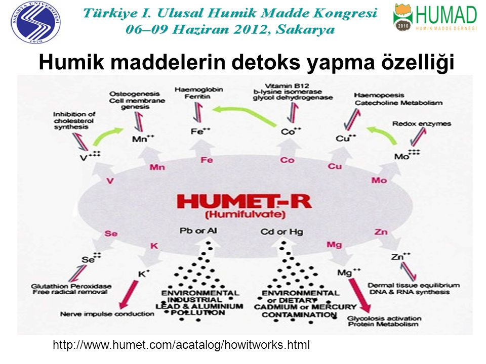 Humik maddelerin detoks yapma özelliği