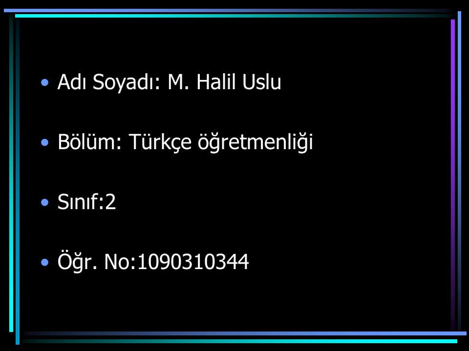 Adı Soyadı: M. Halil Uslu