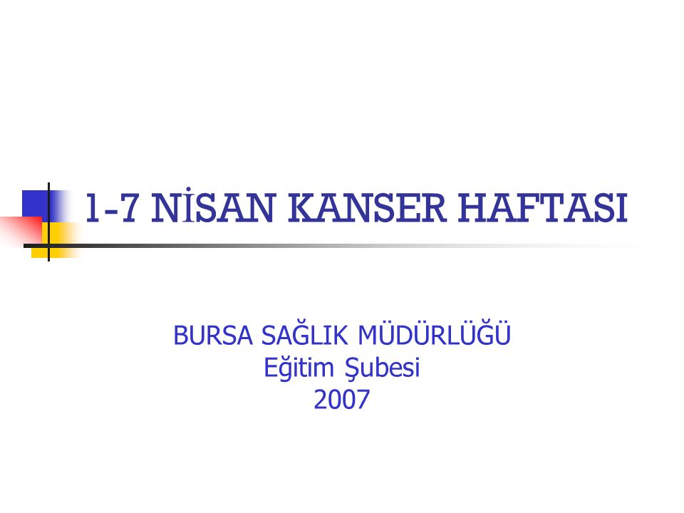 BURSA SAĞLIK MÜDÜRLÜĞÜ Eğitim Şubesi 2007