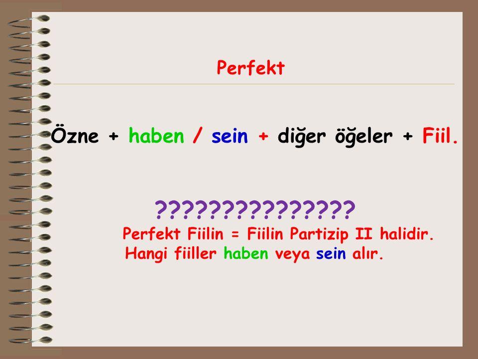 Perfekt Özne + haben / sein + diğer öğeler + Fiil