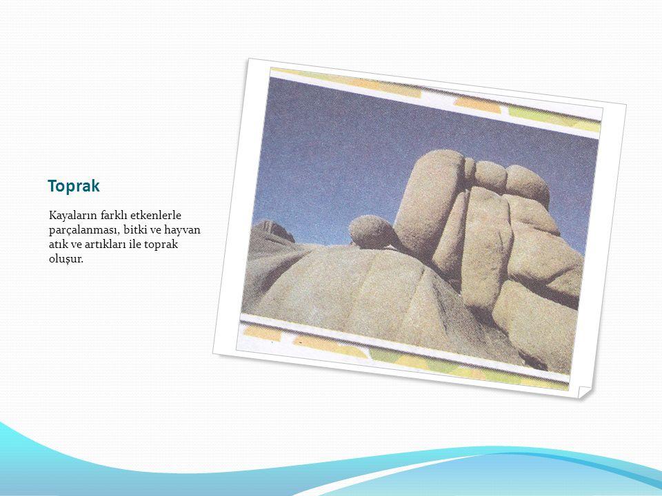 Toprak Kayaların farklı etkenlerle parçalanması, bitki ve hayvan atık ve artıkları ile toprak oluşur.