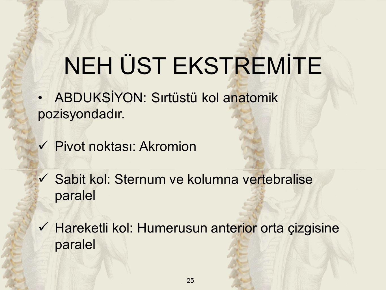 NEH ÜST EKSTREMİTE ABDUKSİYON: Sırtüstü kol anatomik pozisyondadır.