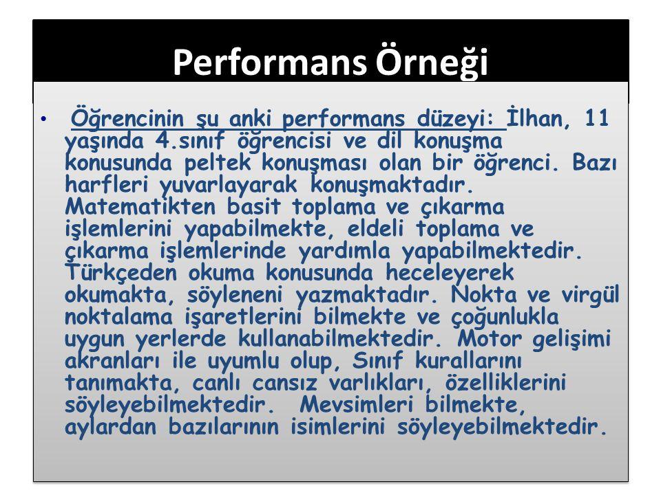 Performans Örneği