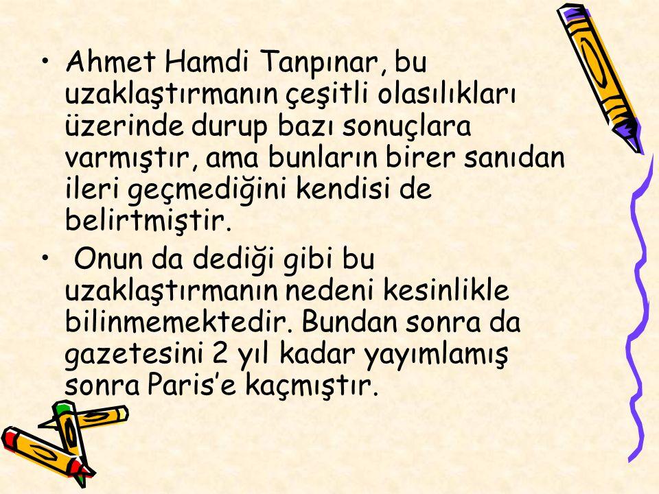 Ahmet Hamdi Tanpınar, bu uzaklaştırmanın çeşitli olasılıkları üzerinde durup bazı sonuçlara varmıştır, ama bunların birer sanıdan ileri geçmediğini kendisi de belirtmiştir.