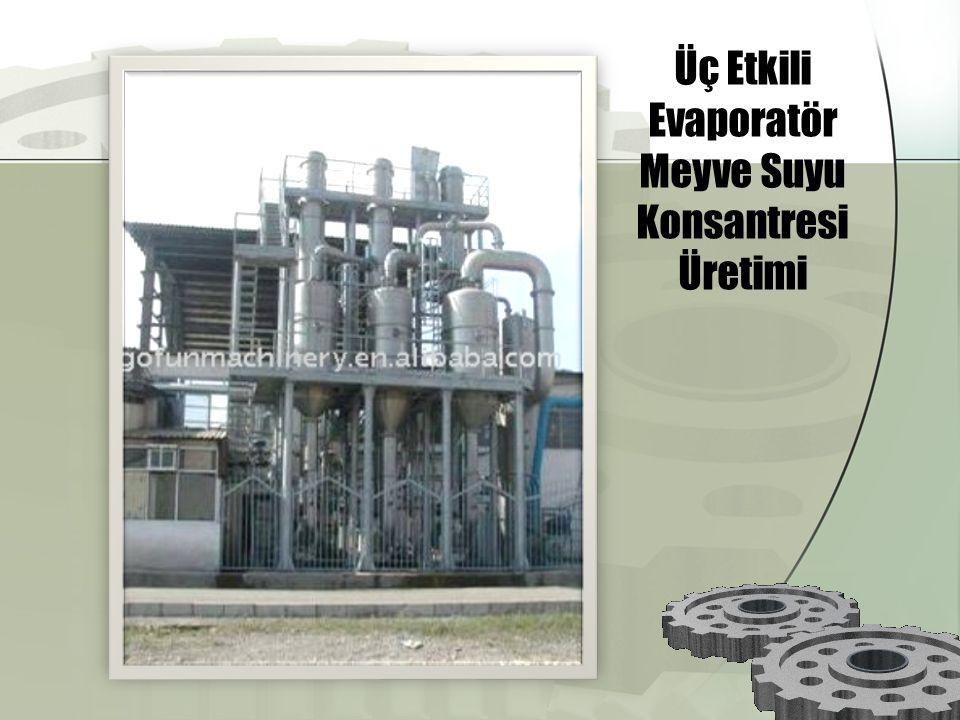 Üç Etkili Evaporatör Meyve Suyu Konsantresi Üretimi