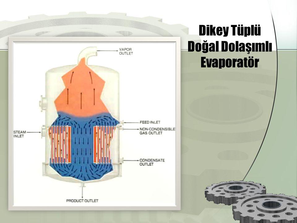 Dikey Tüplü Doğal Dolaşımlı Evaporatör
