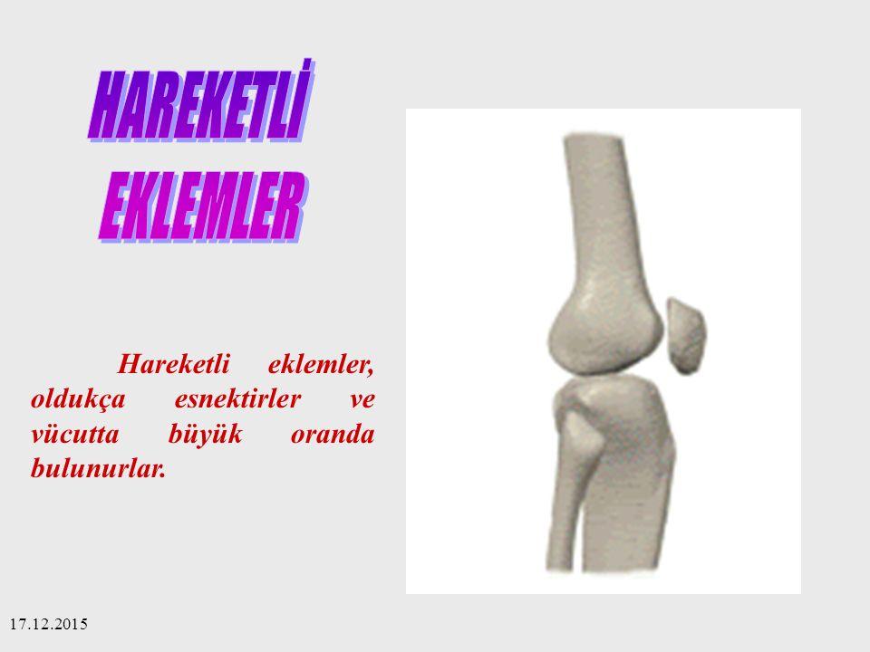 HAREKETLİ EKLEMLER. Hareketli eklemler, oldukça esnektirler ve vücutta büyük oranda bulunurlar.