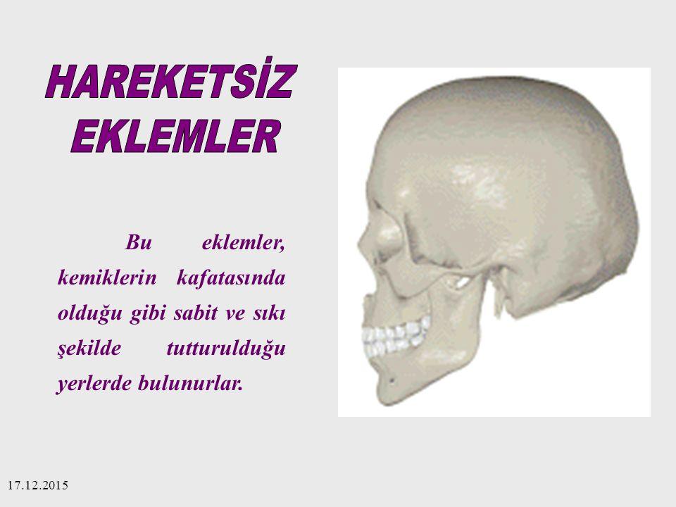 HAREKETSİZ EKLEMLER. Bu eklemler, kemiklerin kafatasında olduğu gibi sabit ve sıkı şekilde tutturulduğu yerlerde bulunurlar.