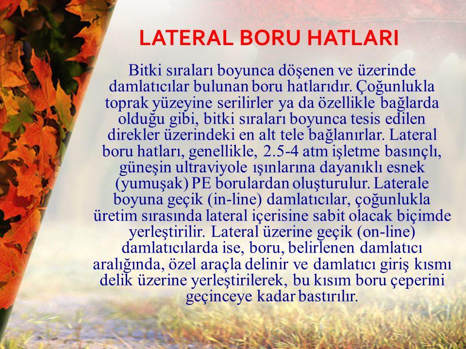 LATERAL BORU HATLARI