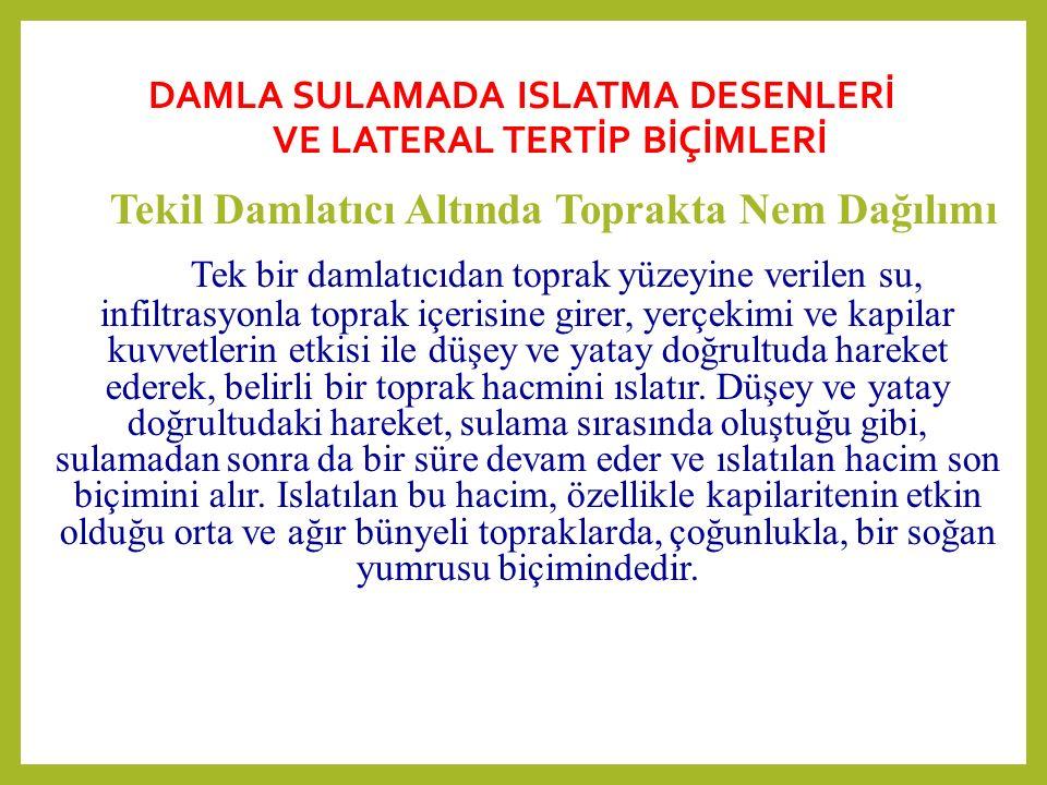 DAMLA SULAMADA ISLATMA DESENLERİ VE LATERAL TERTİP BİÇİMLERİ