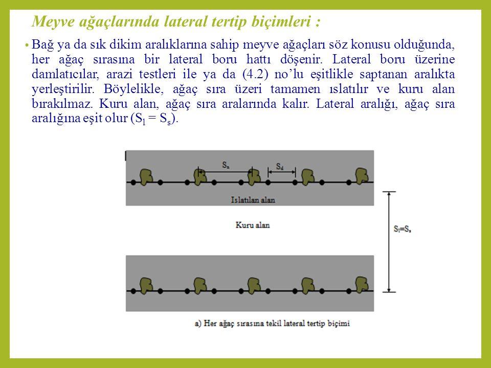 Meyve ağaçlarında lateral tertip biçimleri :