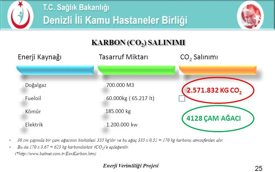 KARBON (CO2) SALINIMI Enerji Kaynağı Tasarruf Miktarı CO2 Salınımı
