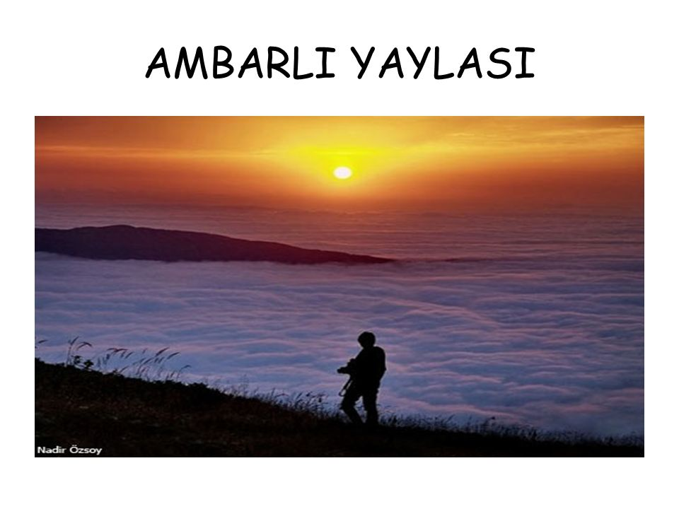 AMBARLI YAYLASI