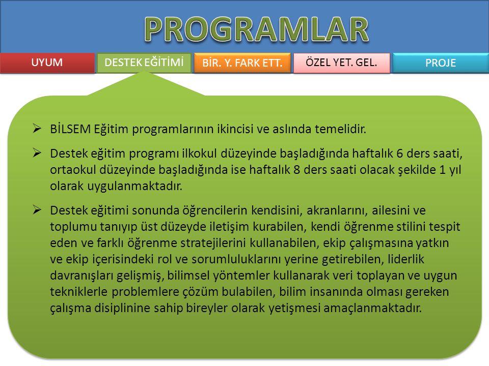 PROGRAMLAR BİLSEM Eğitim programlarının ikincisi ve aslında temelidir.