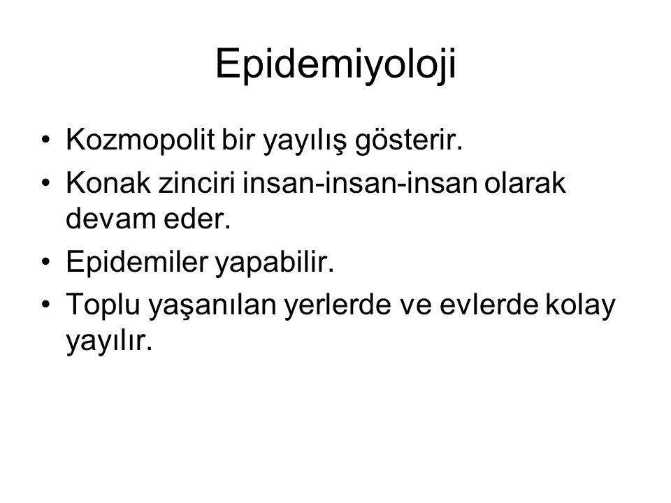 Epidemiyoloji Kozmopolit bir yayılış gösterir.
