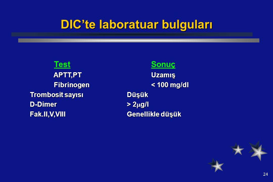 DIC'te laboratuar bulguları