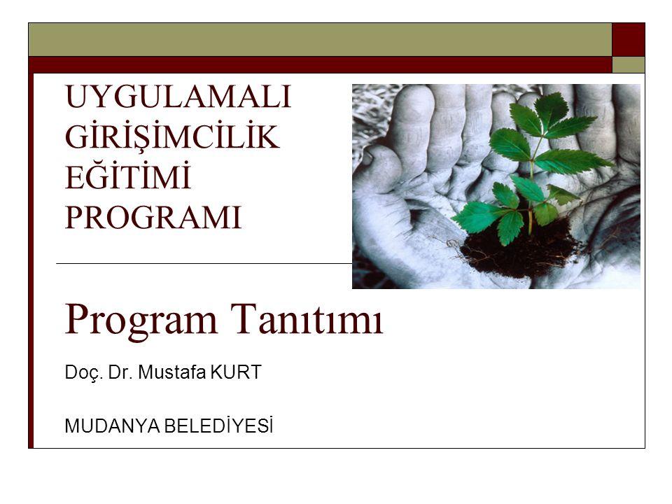 UYGULAMALI GİRİŞİMCİLİK EĞİTİMİ PROGRAMI Program Tanıtımı
