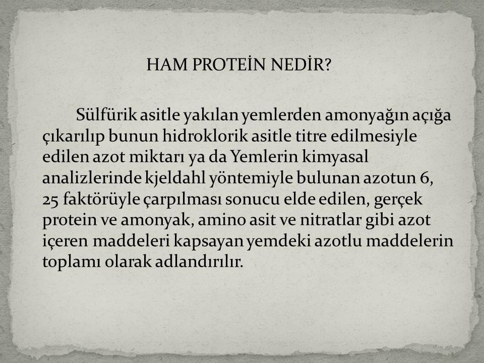 HAM PROTEİN NEDİR.