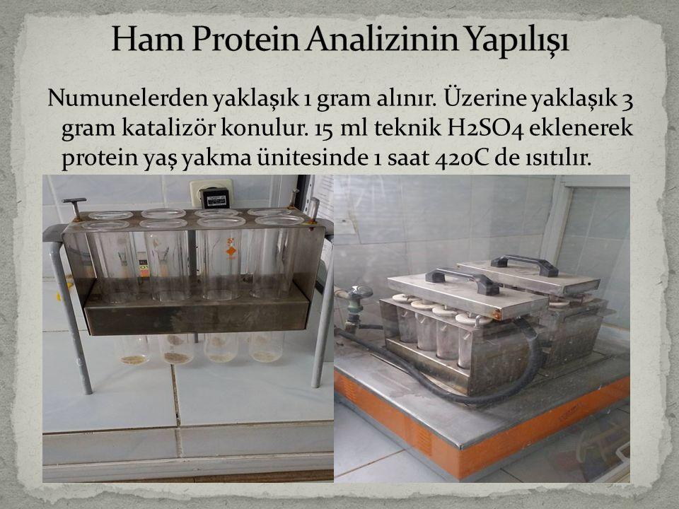 Ham Protein Analizinin Yapılışı