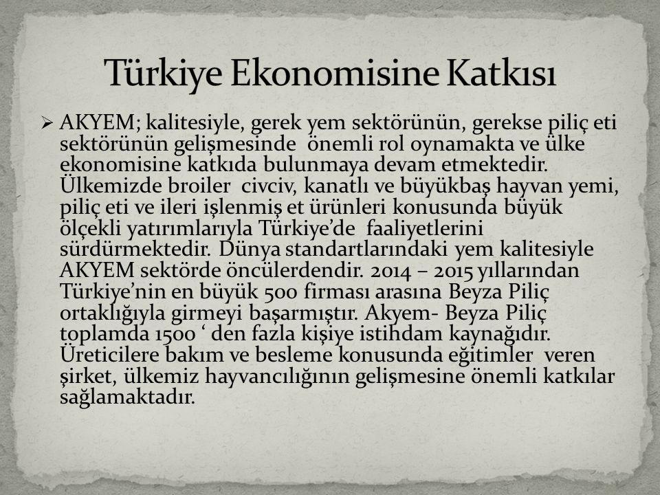 Türkiye Ekonomisine Katkısı