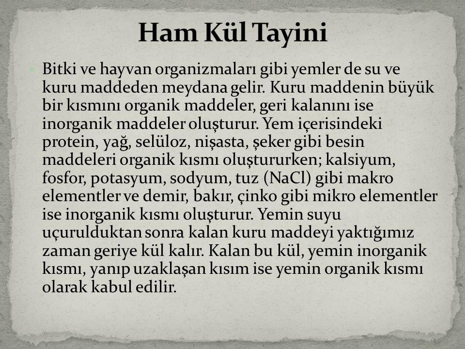 Ham Kül Tayini