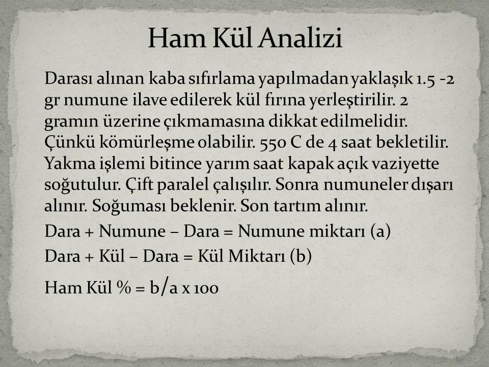 Ham Kül Analizi