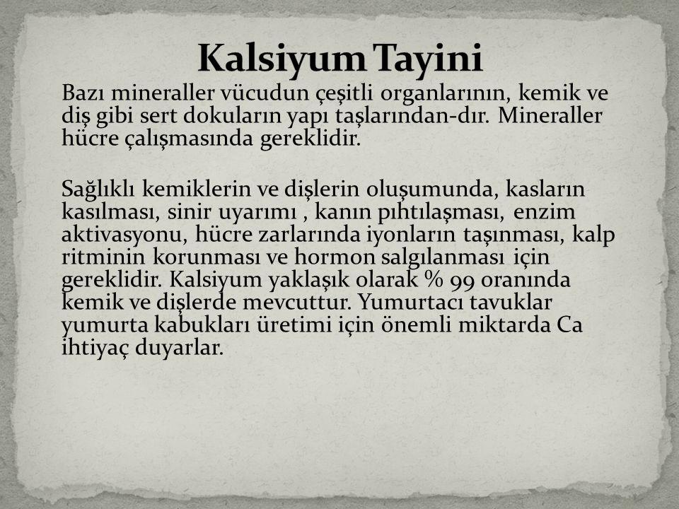 Kalsiyum Tayini