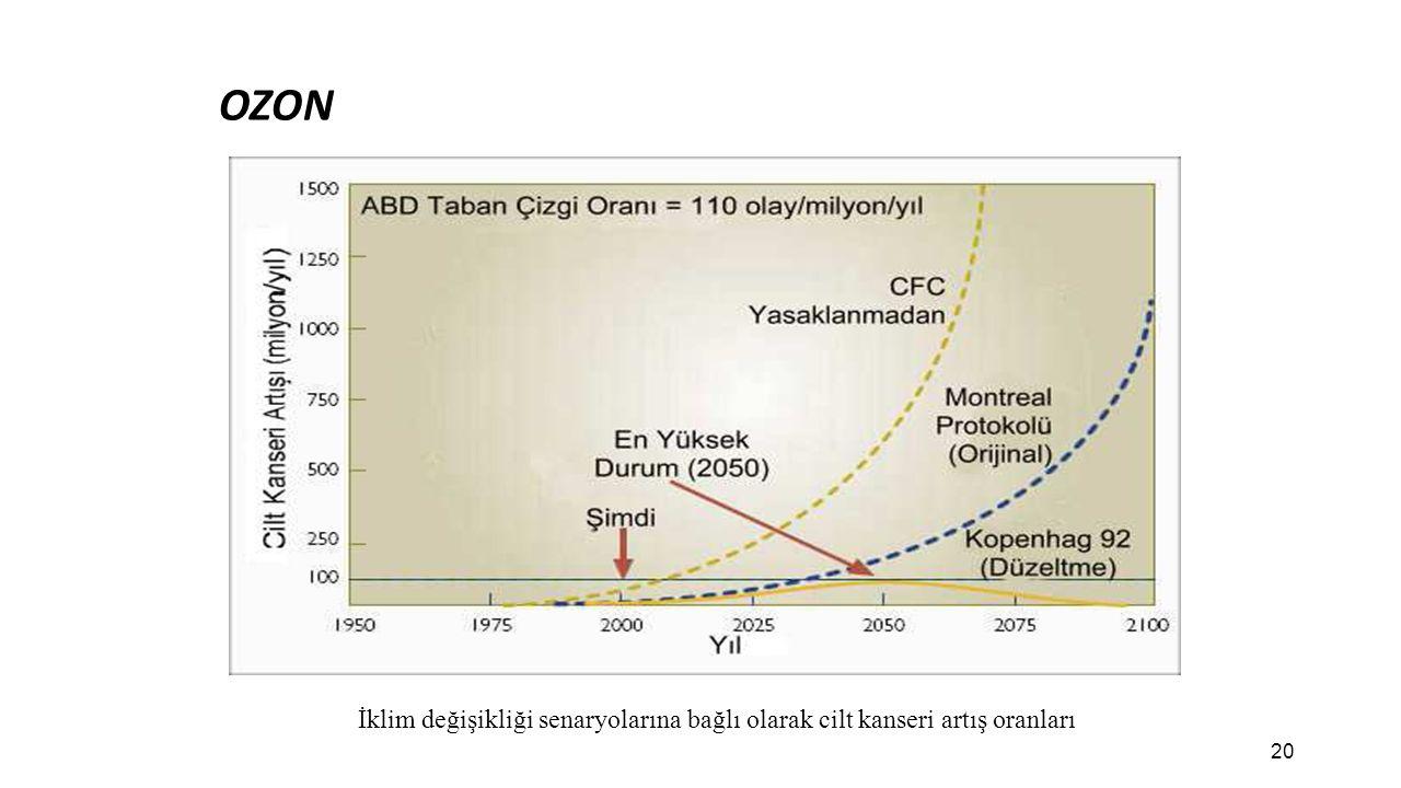 OZON İklim değişikliği senaryolarına bağlı olarak cilt kanseri artış oranları