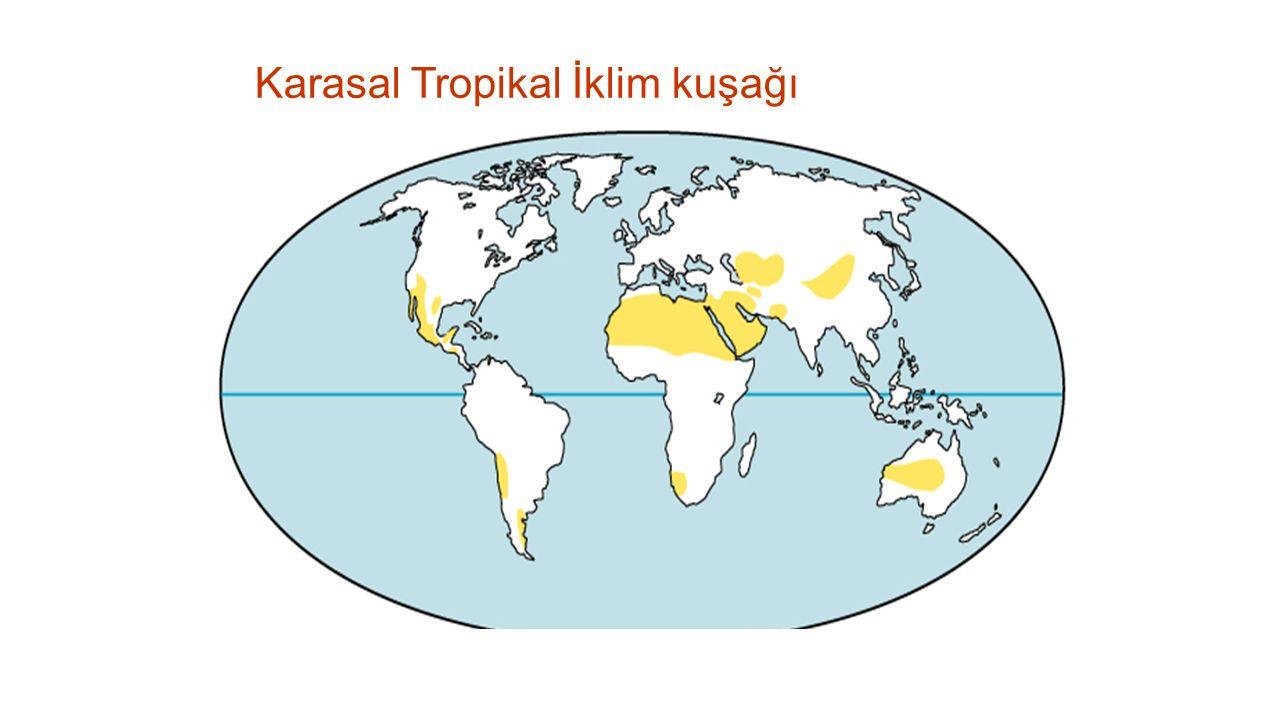 Karasal Tropikal İklim kuşağı