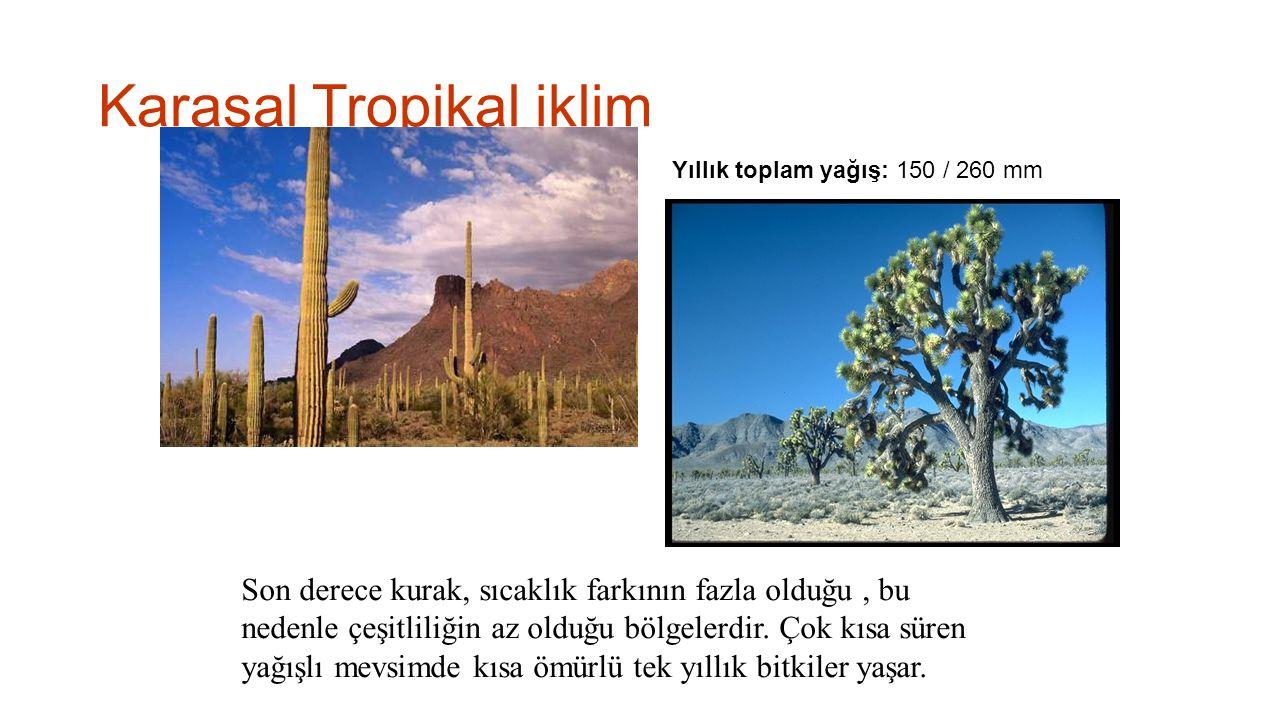 Karasal Tropikal iklim
