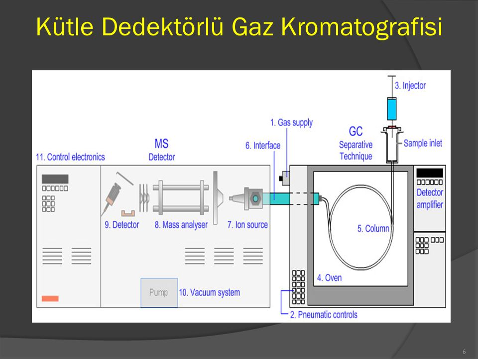 Kütle Dedektörlü Gaz Kromatografisi