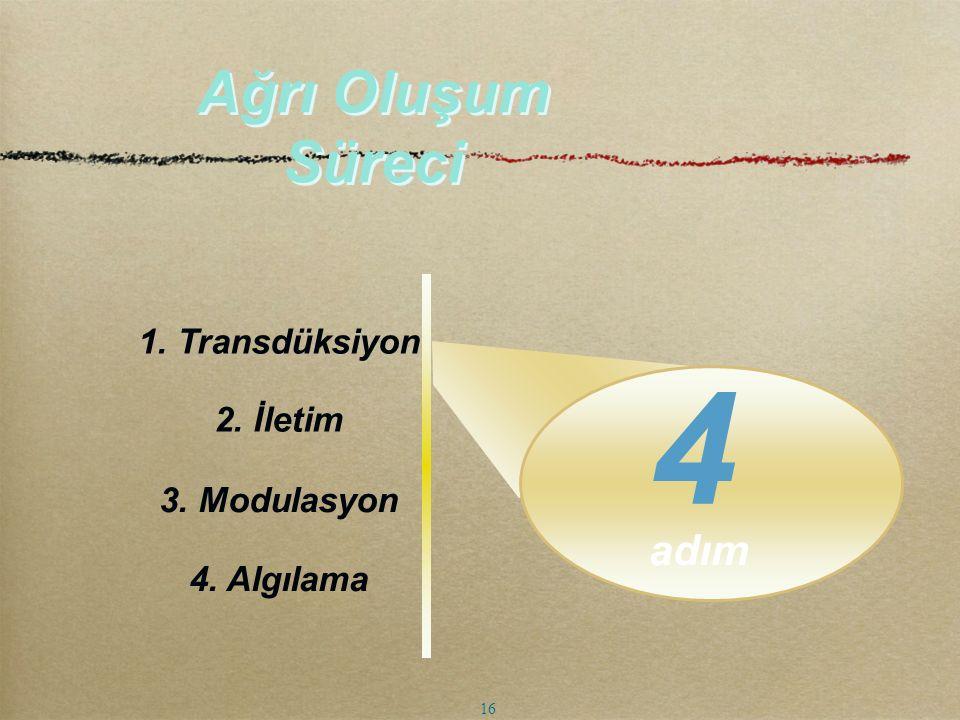 4 Ağrı Oluşum Süreci adım 1. Transdüksiyon 2. İletim 3. Modulasyon