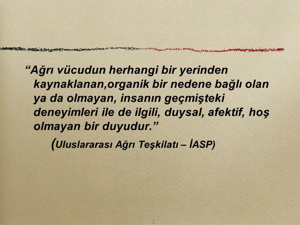 (Uluslararası Ağrı Teşkilatı – İASP)