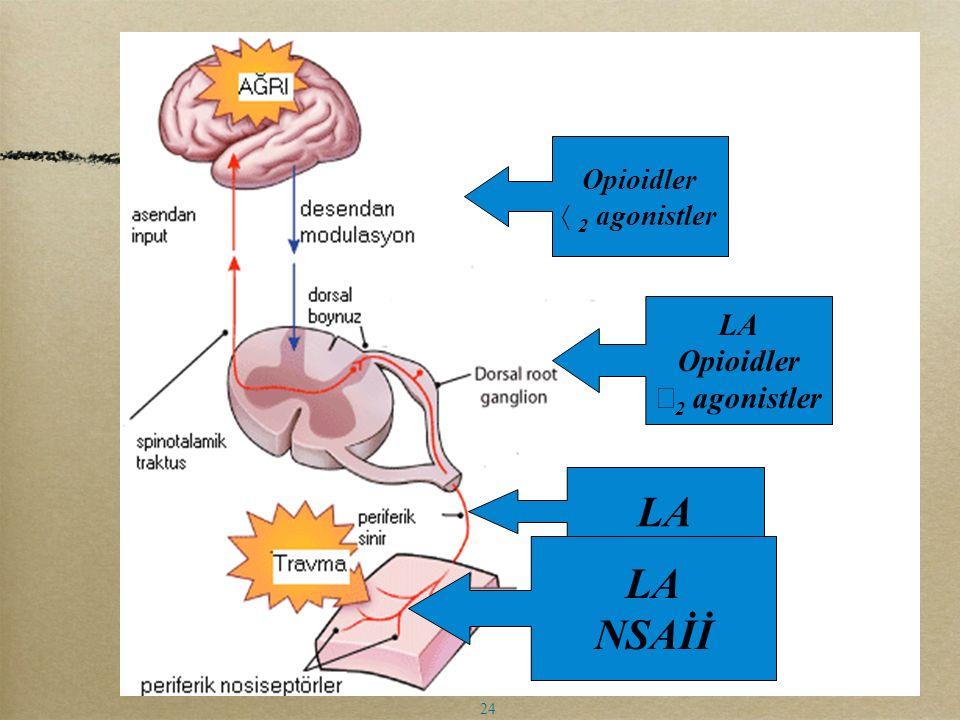 Opioidler α2 agonistler LA Opioidler α2 agonistler LA LA NSAİİ 24