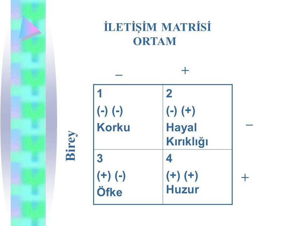_ + _ Birey + İLETİŞİM MATRİSİ ORTAM 1 (-) (-) Korku 2 (-) (+)