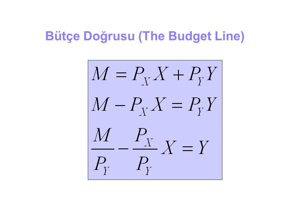 Bütçe Doğrusu (The Budget Line)