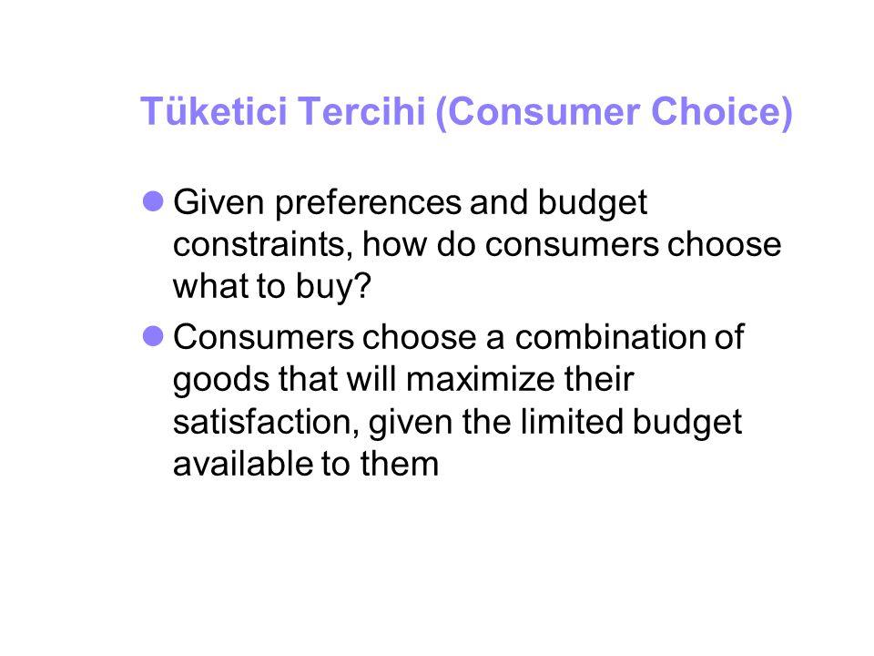 Tüketici Tercihi (Consumer Choice)