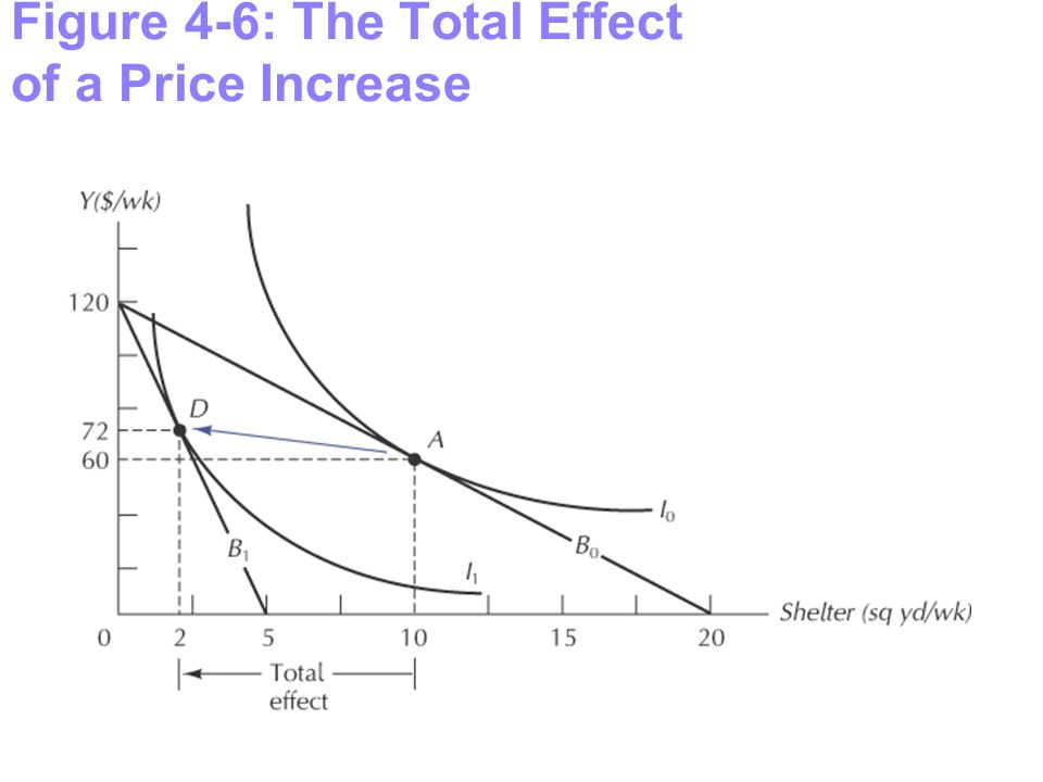 Figure 4-6: The Total Effect of a Price Increase