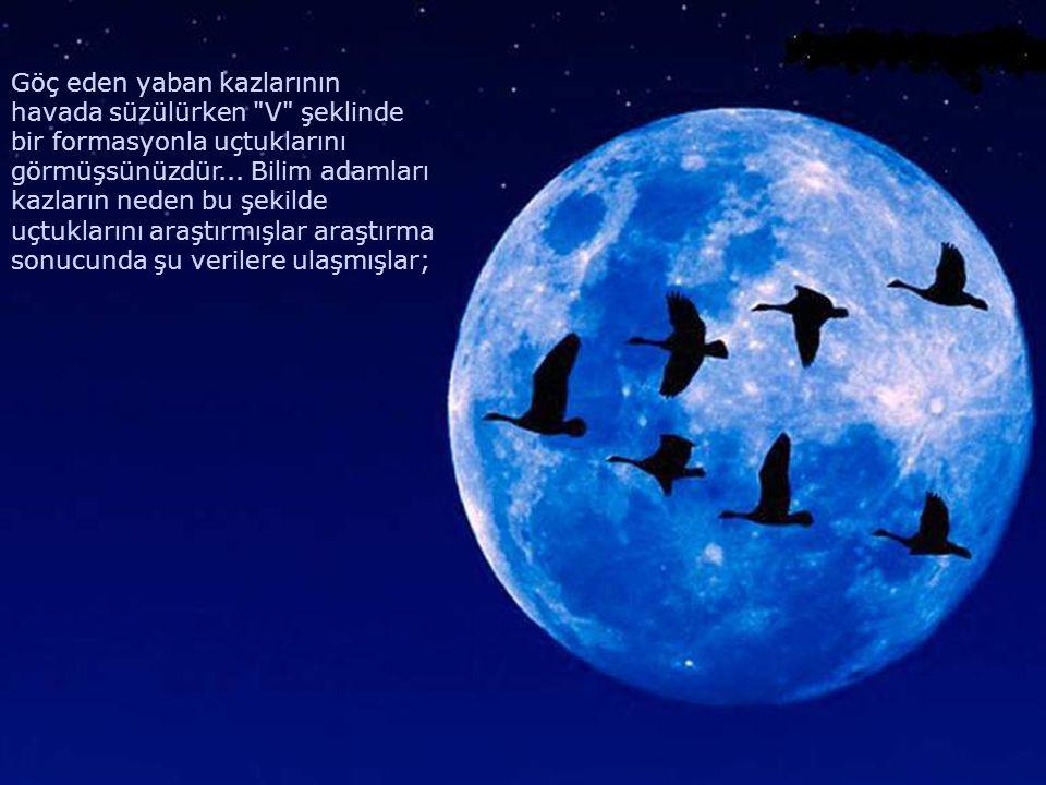 Göç eden yaban kazlarının havada süzülürken V şeklinde bir formasyonla uçtuklarını görmüşsünüzdür...