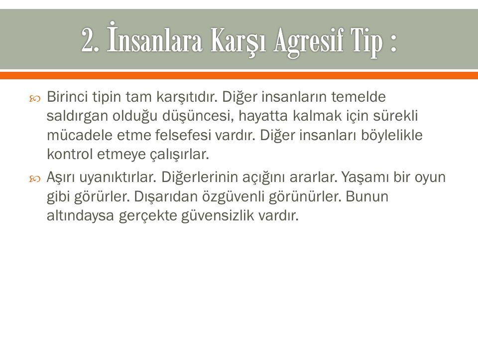 2. İnsanlara Karşı Agresif Tip :