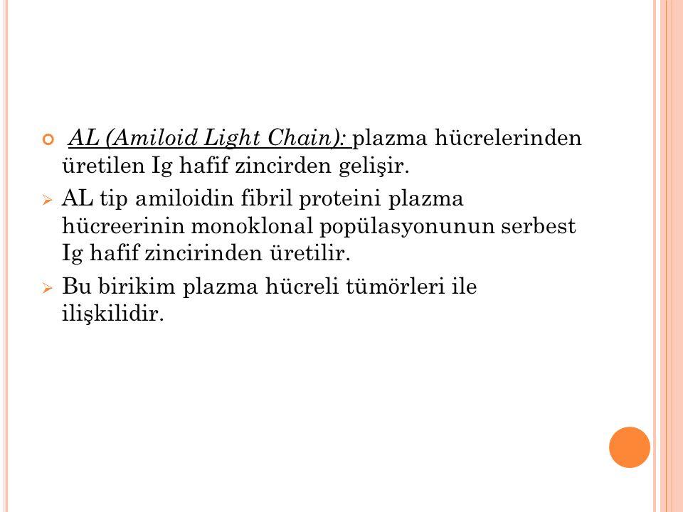 AL (Amiloid Light Chain): plazma hücrelerinden üretilen Ig hafif zincirden gelişir.